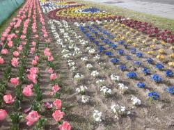 花の町東神楽