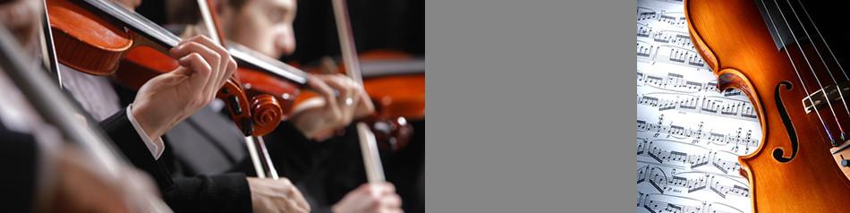 Streichmusiker-für-das-Konzert. Konzert mit einem Streichquartett.