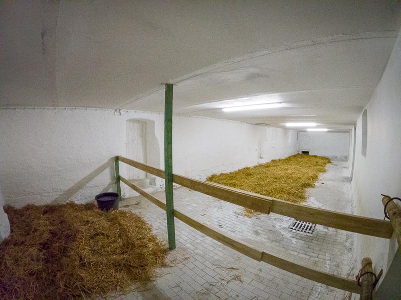 ein neuer Stall für unsere Pferde
