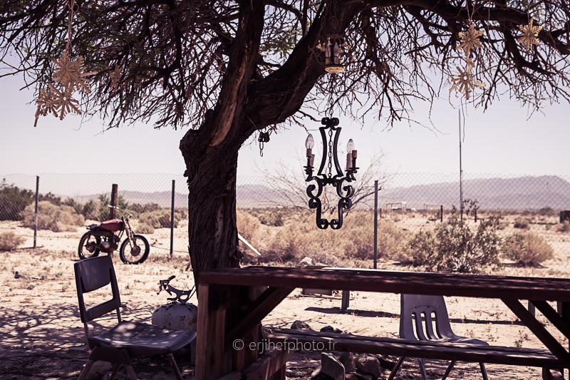 the palms, twentynine palms,desert mojave, désert, yucca valley, joshua tree, road trip, road trip california, hit z road by zegut, rtl2, californie, etats unis, usa, rachel jabot ferreiro, erjihef photo