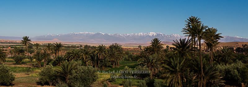 maroc, tazentoute, palmeraie,massif de l'Atlas, rachel jabot ferreiro, erjihef photo