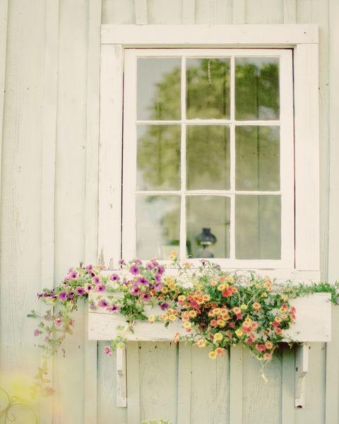 flores para celebraciones-santander