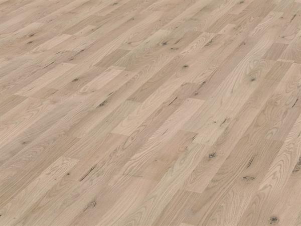 Eskimo Oak