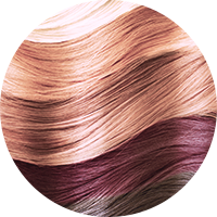 Haare blondieren preis