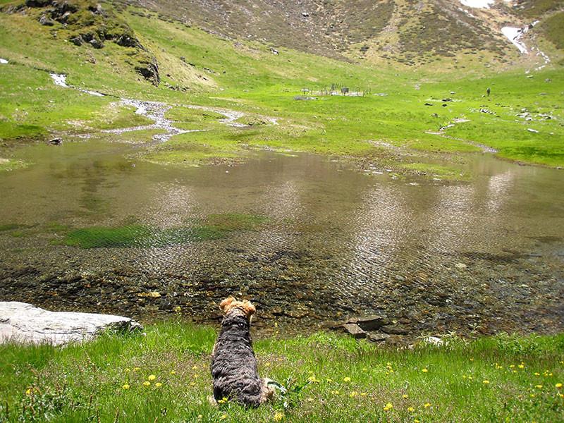 Ralf au barrage d'Uretz