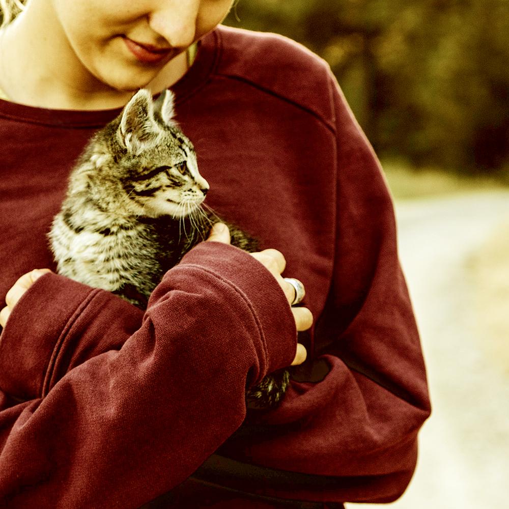 Katzensnacks und Leckerlis für Katzen - kaltgepresst
