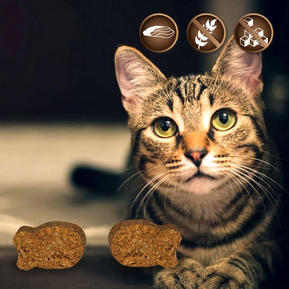 Leckerlis für Katzen - ohne Zucker und getreidefrei