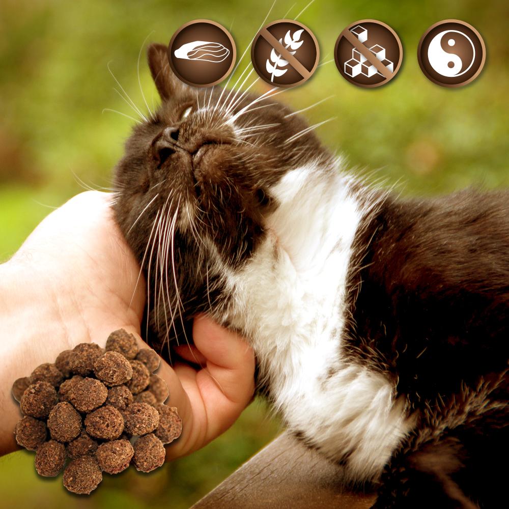 Fleisch-Trüffel - Katzensnacks - exklusiver Belohnungssanck
