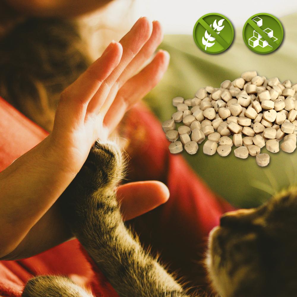 Katzensnacks - ohne Zucker