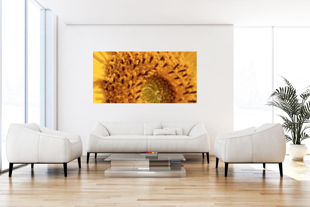"""Leinwandbild """"Sonnenblume"""""""