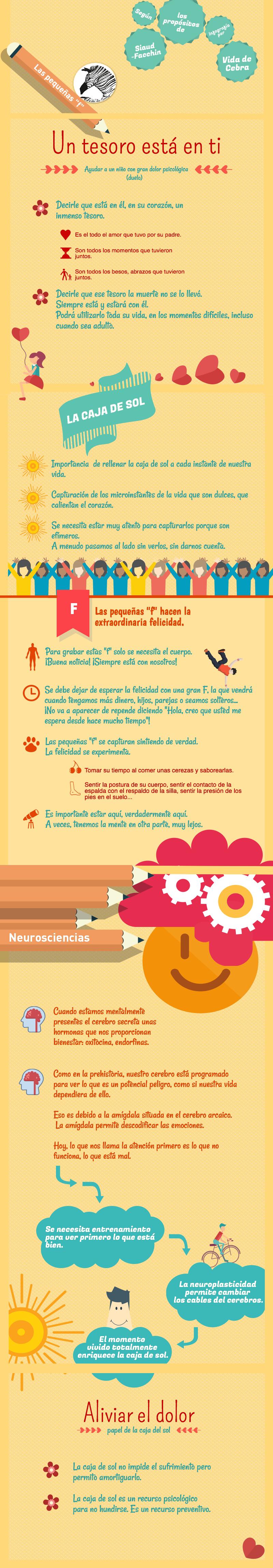 Infografía vida de cebra siaud-facchin felicidad
