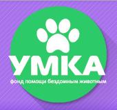 Умка - Фонд помощи бездомным животным во Владивостоке