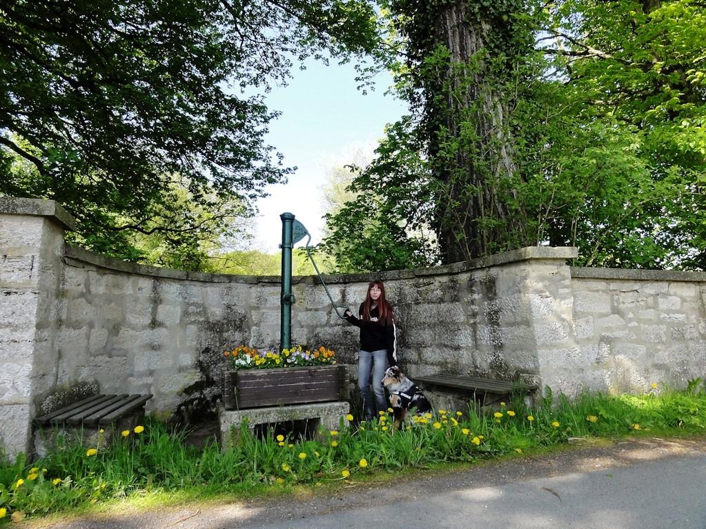 An der Schloßmauer in Bockstadt