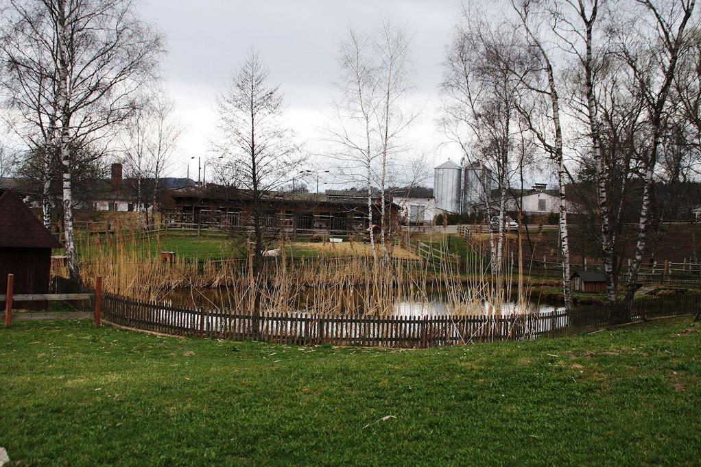 Idyllisch angelegter Teich