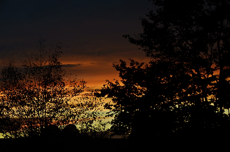 Feurige Silhouetten - Fiery silhouettes