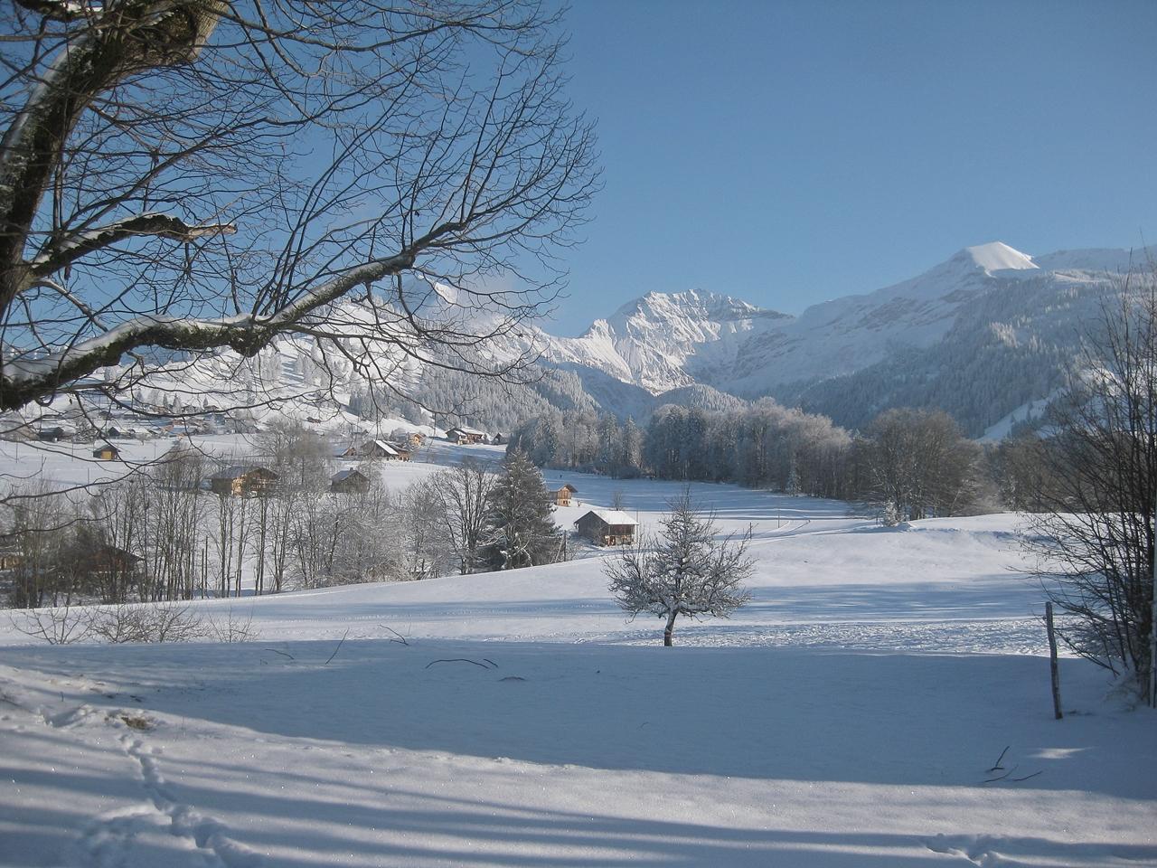An einem wunderschönen Wintertag mit Thamiam in den Bergen - On a beautiful winter day with Thamiam in the mountains