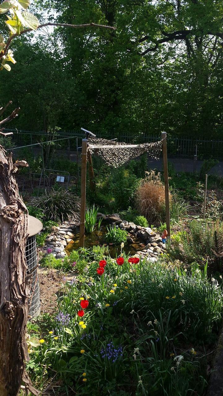 Garten im Fortschritt - Gardenwork in progress