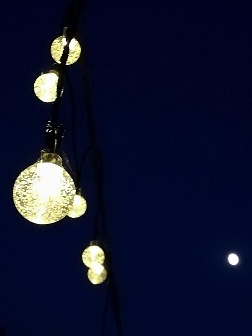 Fast Vollmond - Almost full moon / fool moon