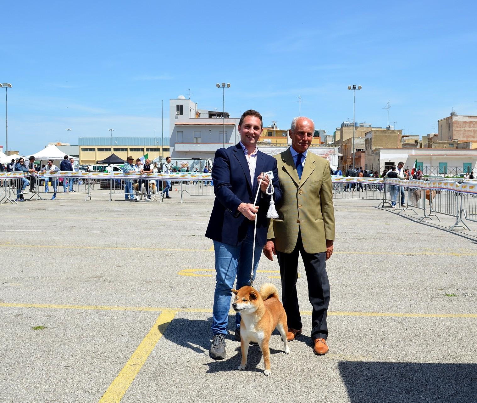 """RYU di Casa Savoca """" Expo Nazionale Marsala 1° Eccellente C.A.C- B.O.B 26/04/15"""""""