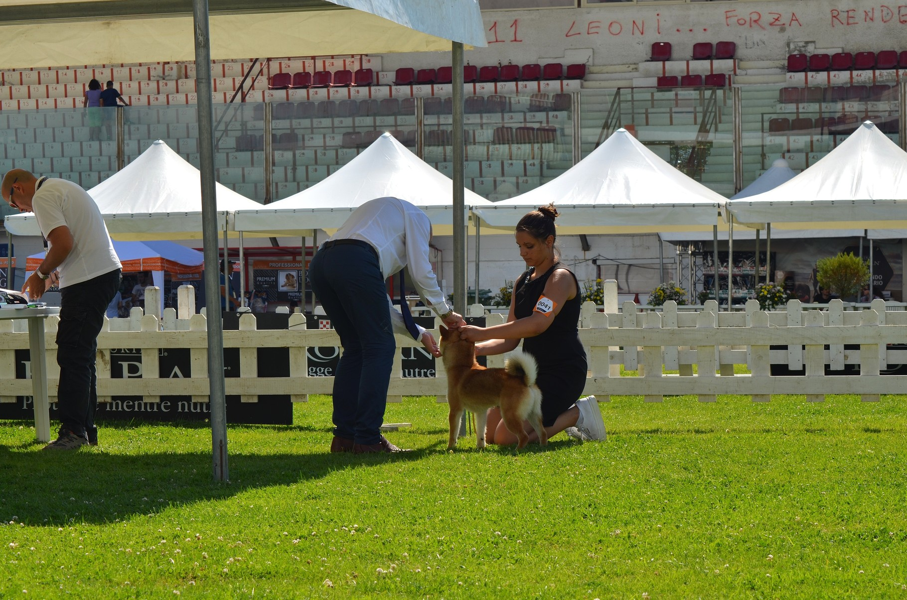 """Bring Me Luck Katsuro """" Expo Internazionale di Rende e raduno C.I.R.N. 1° Eccellente"""" B.O.B  20-21/06/15."""