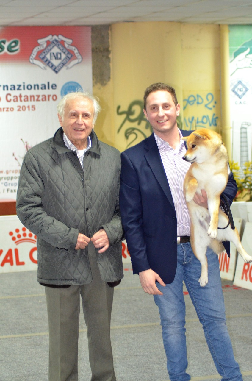 """KATSURO di Casa Savoca """" Expo Nazionale di Crotone 1° Eccellente C.A.C- C.A.C.I.B- B.O.B 21/03/15"""""""