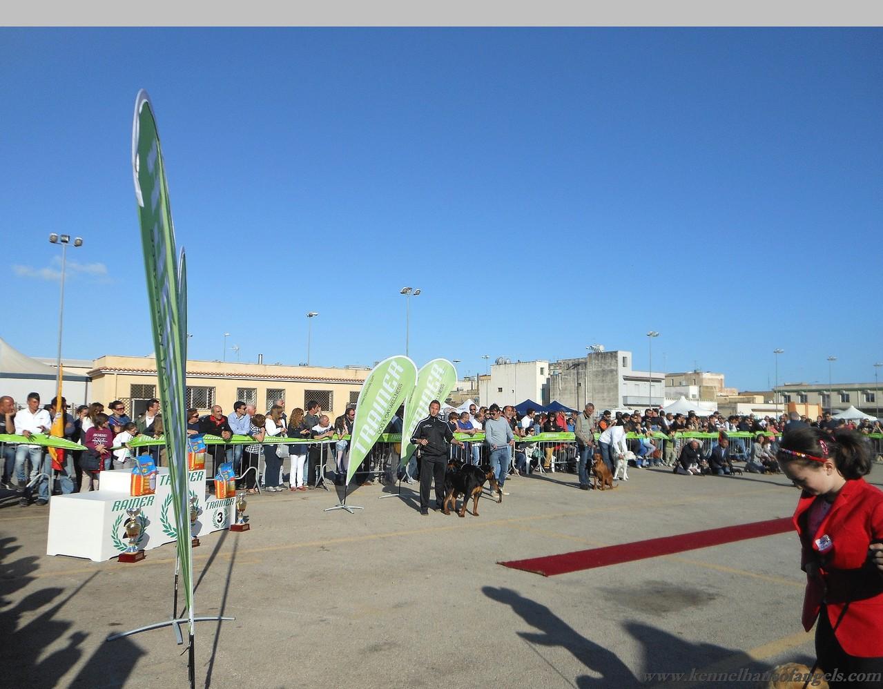 Expo nazionale Marsala