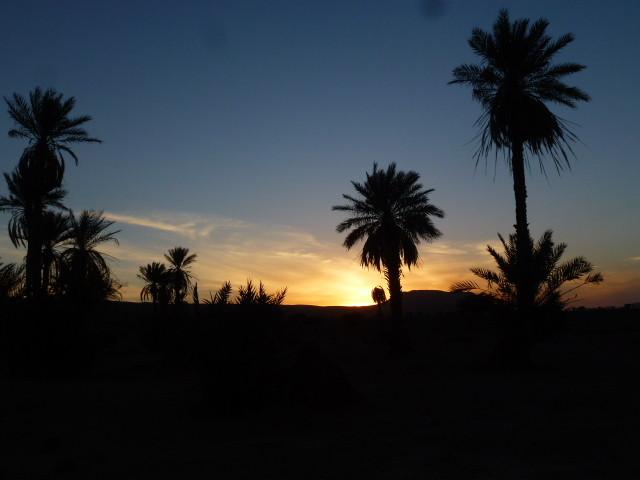Admirez le coucher de soleil au bord des dunes !