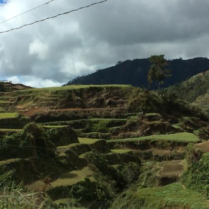 In diese Höhen wird Reis und Gemüse angepflanzt.