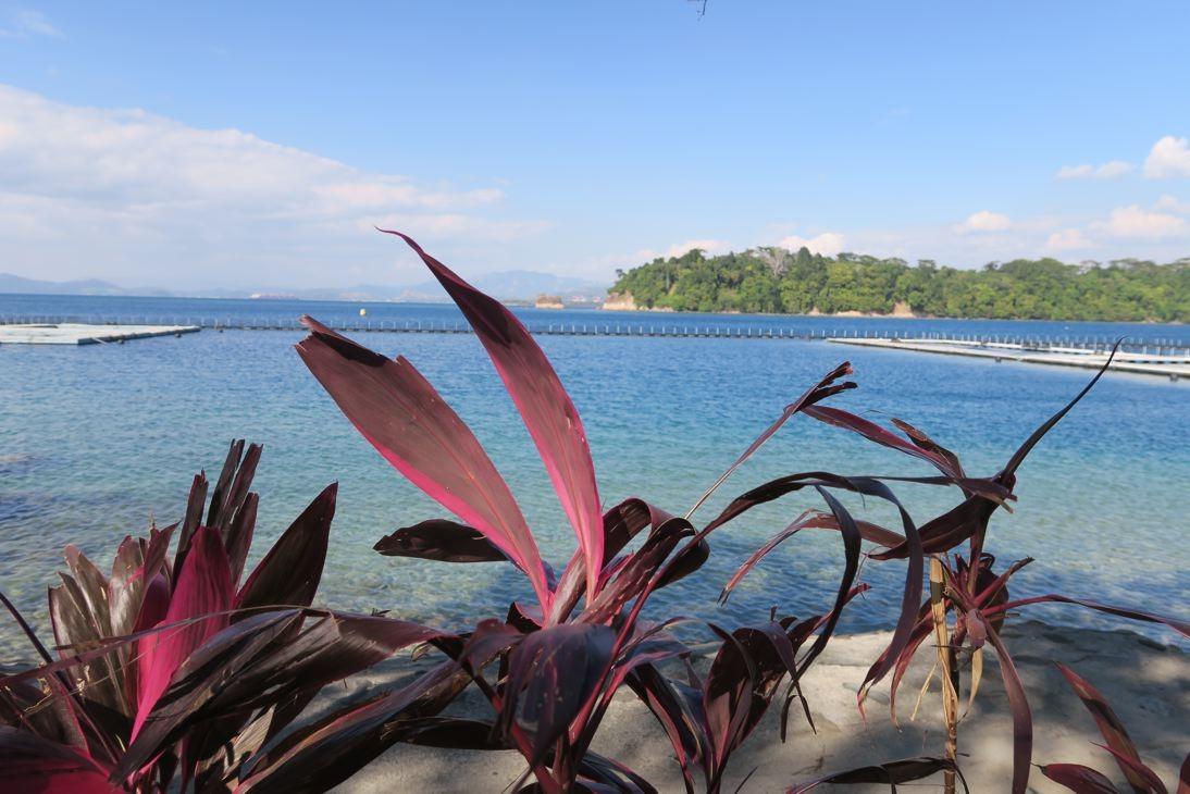 Paradiesisch in Subic.