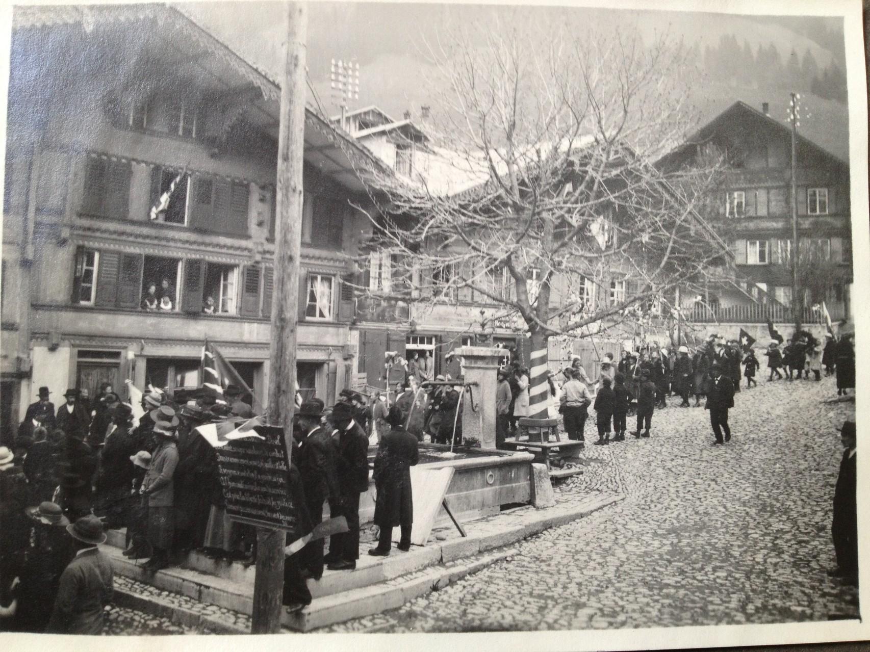 Le marronnier planté à l'occasion du 100ème anniversaire de l'entrée du canton de Vaud dans la Confédération.