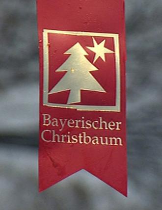 Bayerischer Christbaum, Christbaum aus Niederbayern, Christbaum aus der Region, Tannenbaum, Straubing-Bogen, Oberschneiding, Christbaum, Schwesinger