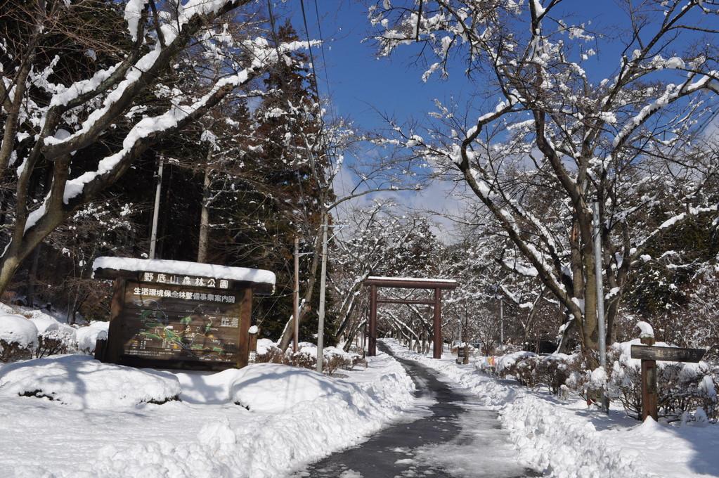 雪と青空のコントラストの美しさは格別です