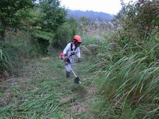 登山道の草刈5