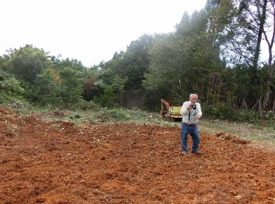植栽地の整地後