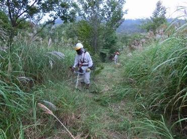 登山道の草刈4