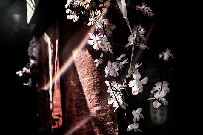 Strassenszene in Kyoto während der Kirschblüte Japan, als Farbphoto