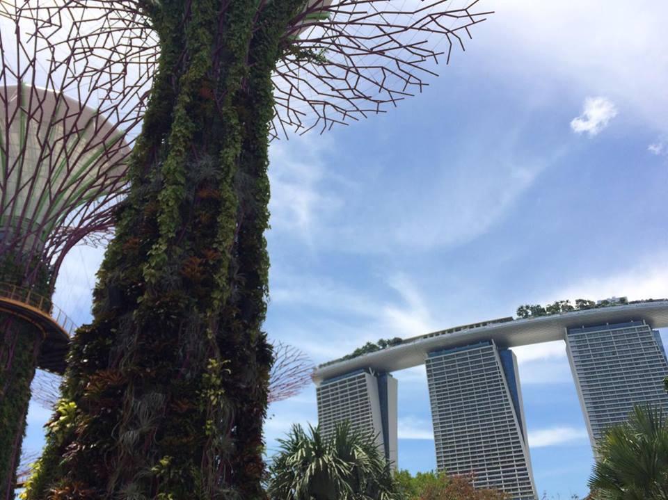 週末を利用し訪れたシンガポール