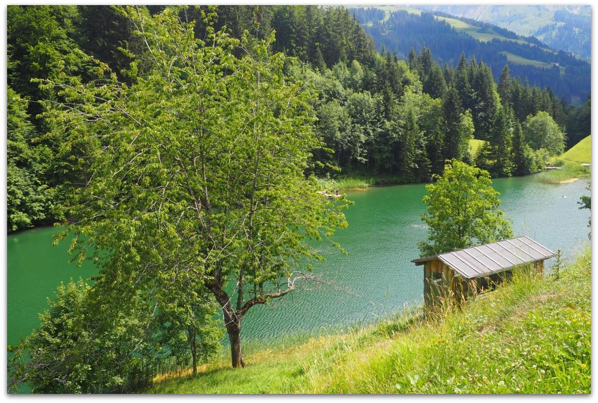 ...der Seewaldsee im Großen Walsertal ist ein>>>>>>