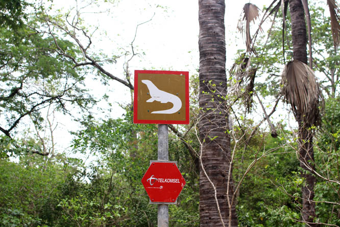 Warning sign for Komodo dragons