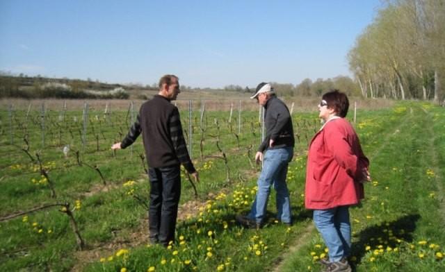 Idées cadeaux sur mesure : découverte privilège du vignoble