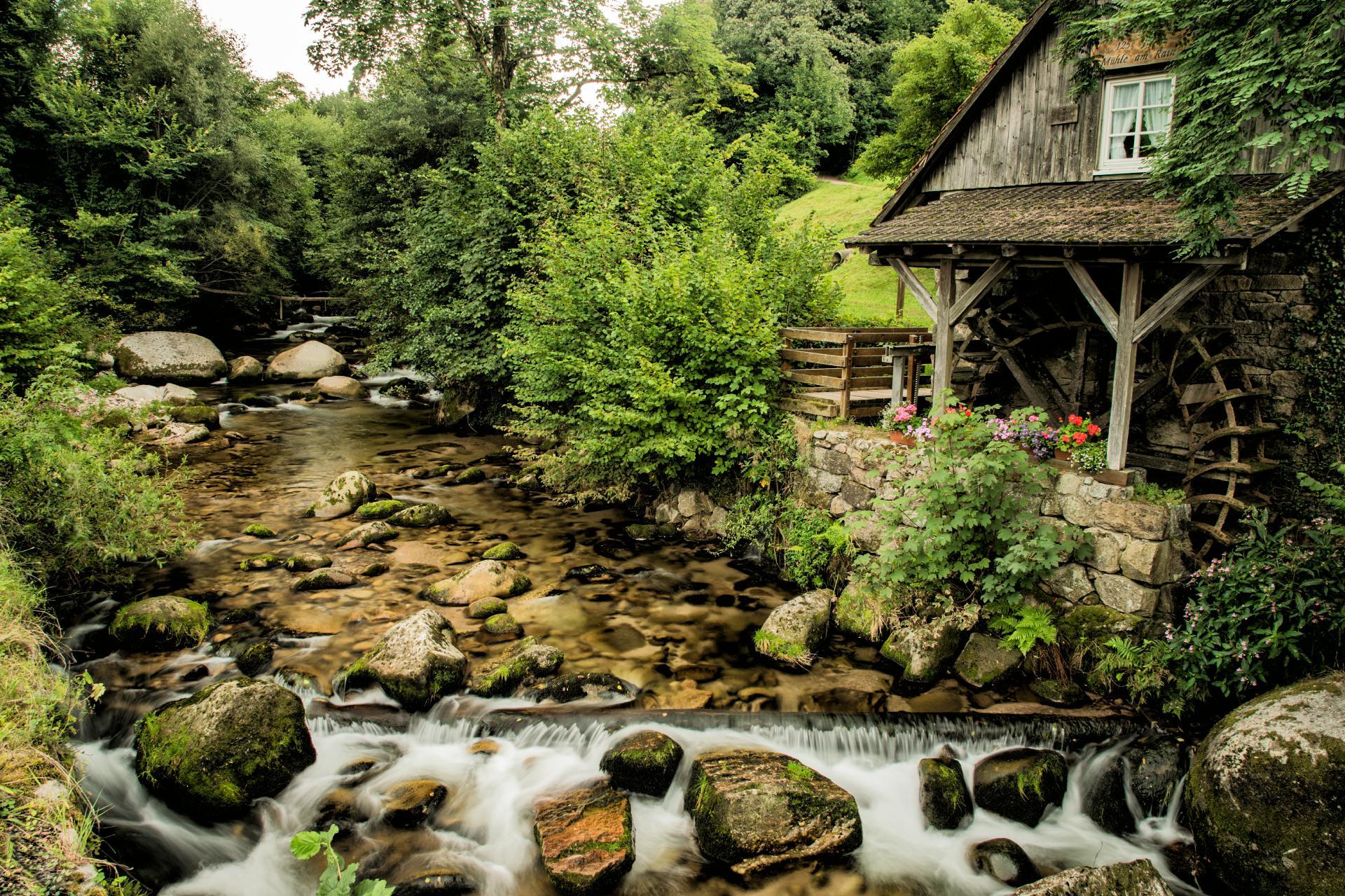 Schwarzwald by Sven