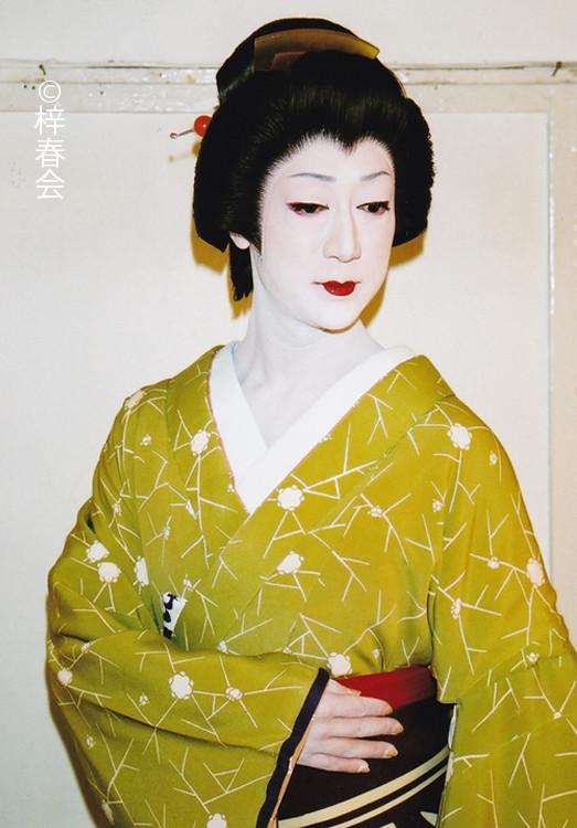 2007年12月歌舞伎座「ふるあめりかに袖はぬらさじ」(芸者 太郎)