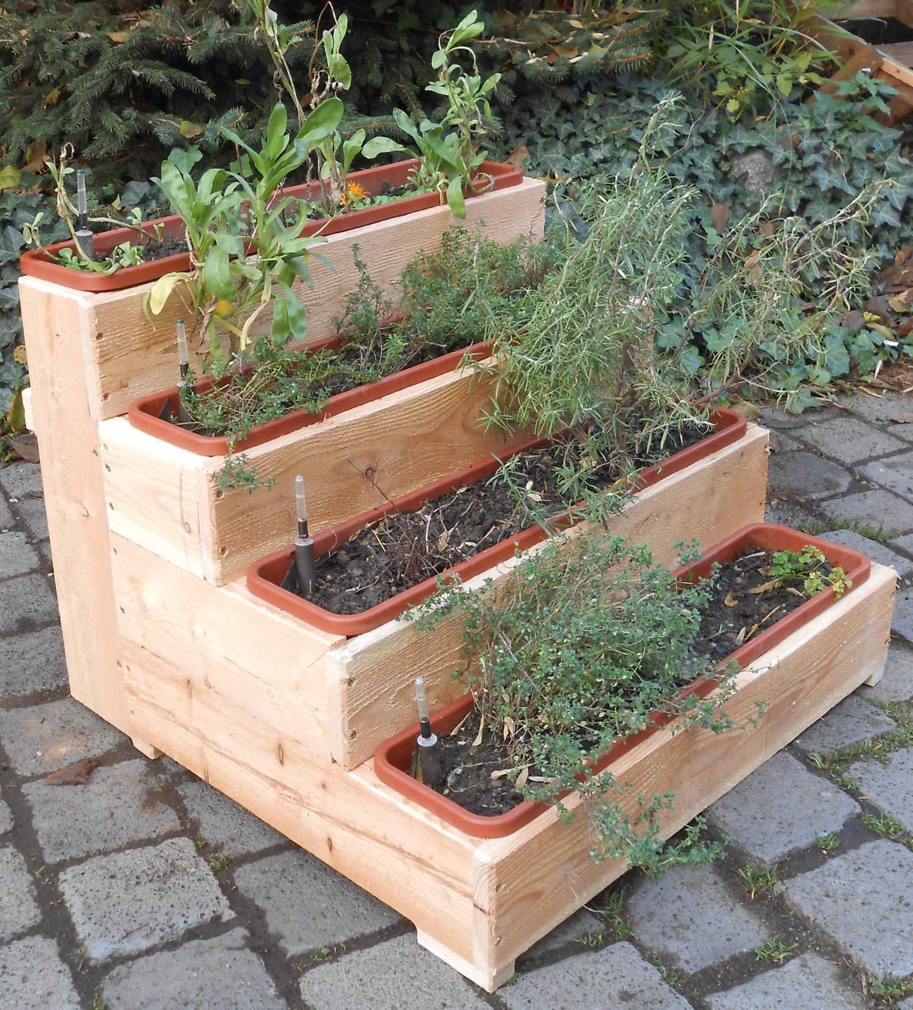 kräuterbeet - komposttoilette