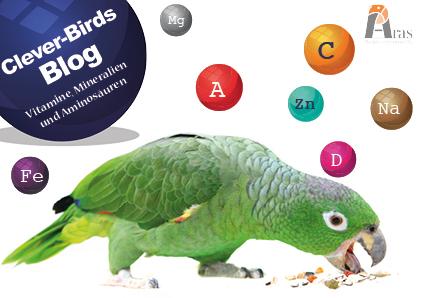 Wie sinnvoll sind Nahrungsergänzungen für unsere Vögel