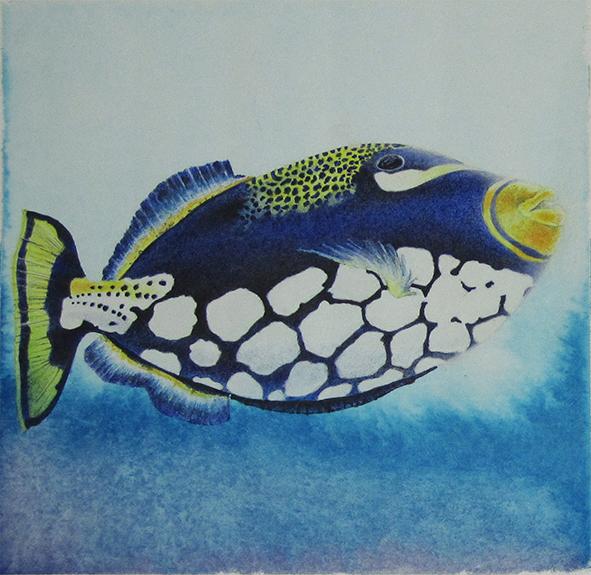 Clown-Triggerfish, ART Innsbruck Januar 2020