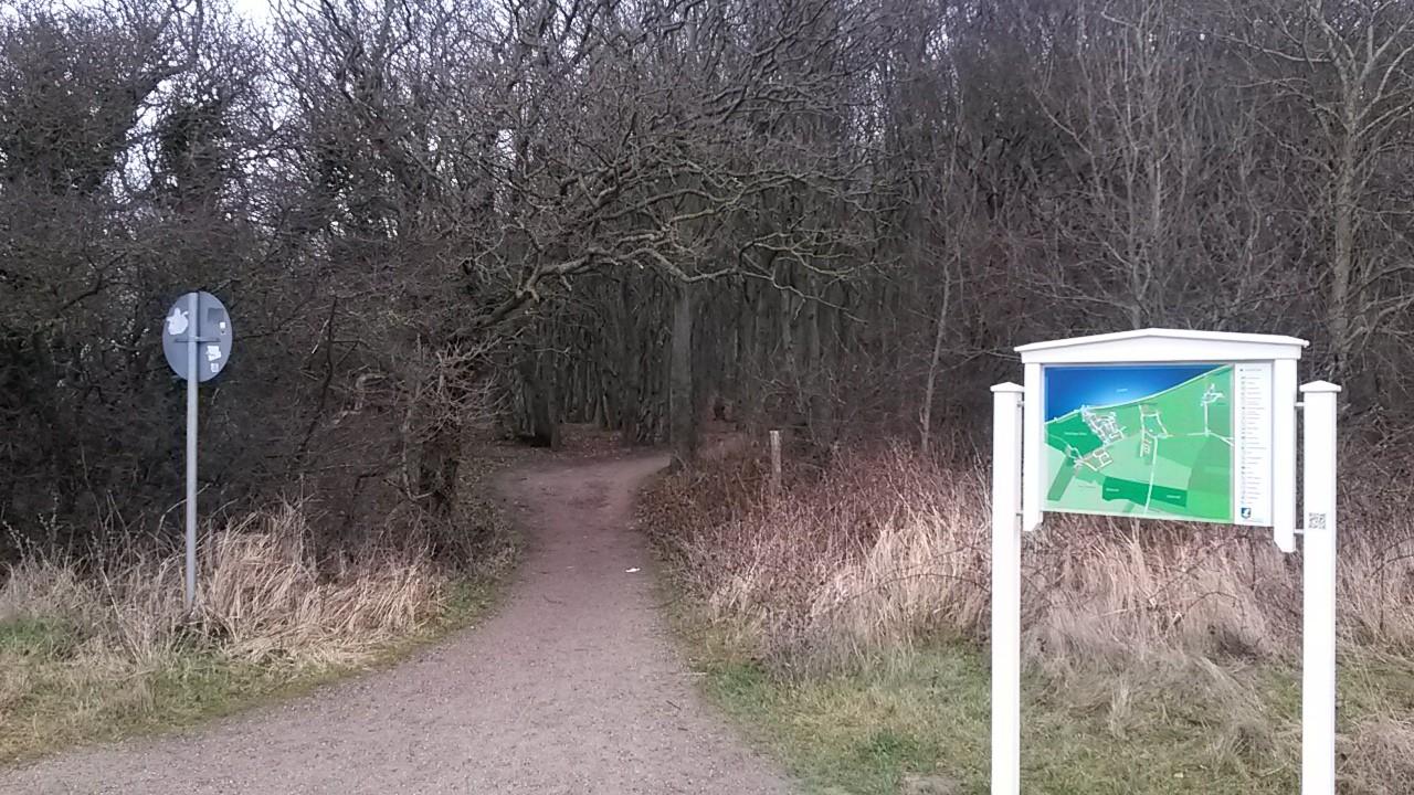 Eingang in den Gespensterwald