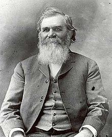 D.D. Palmer (1895)