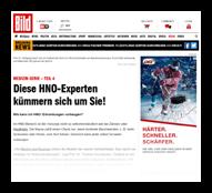 Grafik: Pressebericht BILD.de