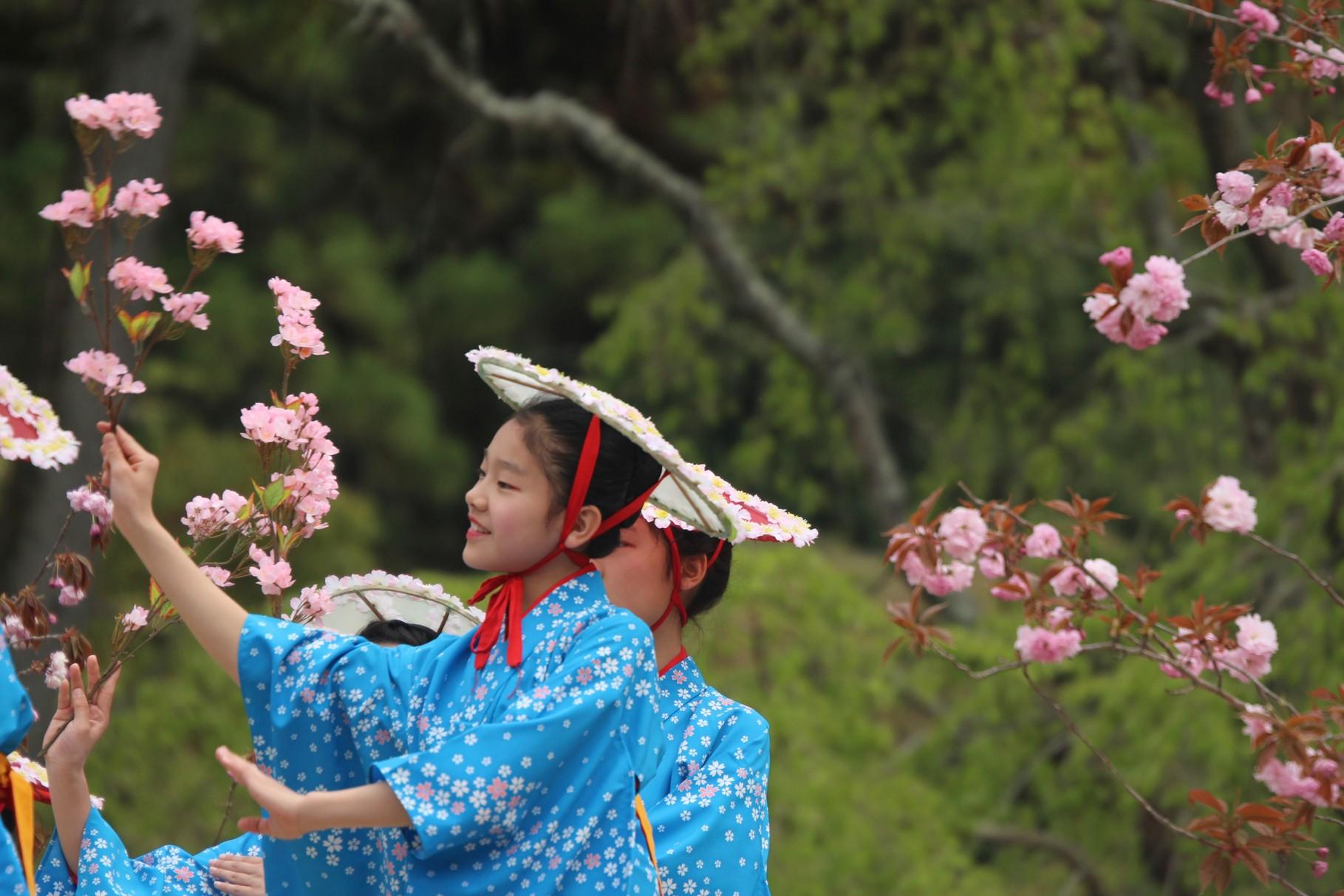 京都市, 醍醐寺 Kyōto, Daigoji, Ho-Taiko Hanami Gyoretsu (Toyotomi Hideyoshi's cherry blossom viewing parade)