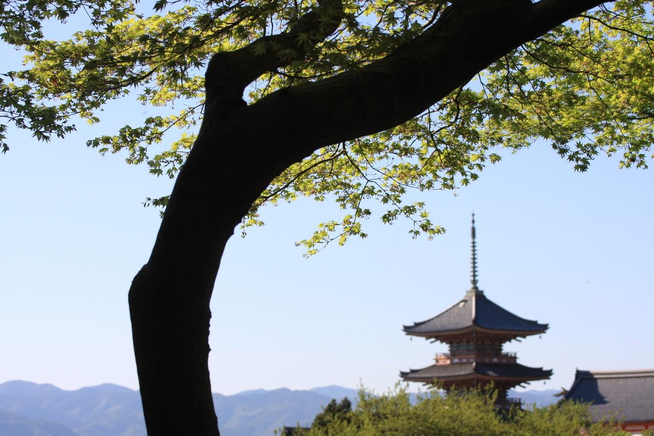 Kyomizudera, Kyōto